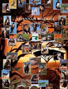 animali_della_savana